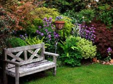 Inviting garden seat at Kamahi Cottage