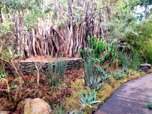 Singita Boulders, Sabi Sands, South Africa. Design and photo Leon Kluge