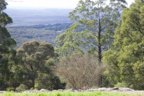 View from the Jungle Lodge Mt Tomah