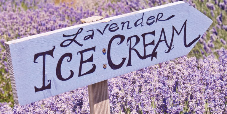 Why not try some lavender ice cream?