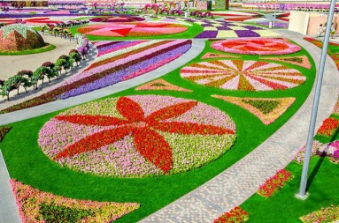 UAE, Dubai - Miracle Garden Photo Srilatha Sharma via Flickr