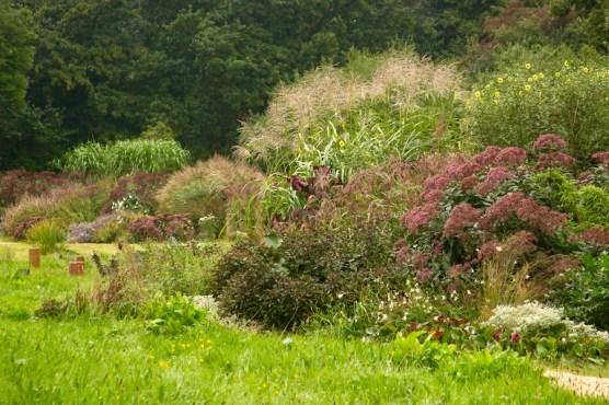 Ernst Pagels Garten in Leer, late summer. Photo courtesy Carolyn Mullet, Carex Tours