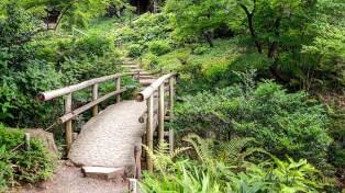 Japan Sankeien Gardens