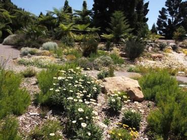 Mt Annan Botanic Garden