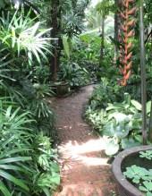 Thailand Jim Thompson Garden Bangkok