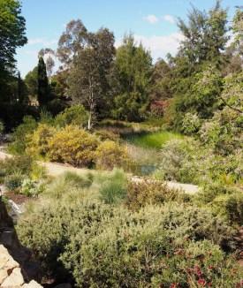 Walcott Garden, Canberra