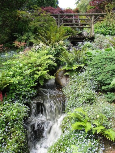 Ayrlies garden, Auckland. Photo Helen Young