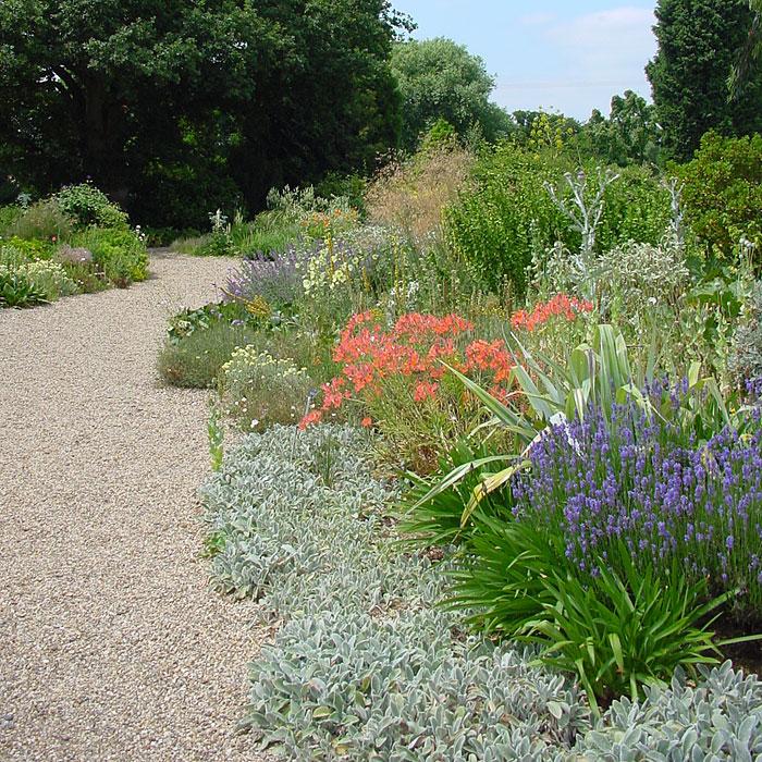 Beth Chatto's dry gravel garden, Essex, UK. Photo Lynette via Flickr