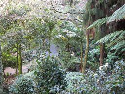 Eden Gardens Auckland New Zealand