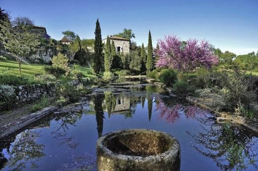 France - Provence garden