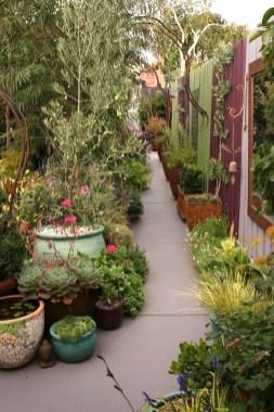 Melbourne city garden. Design Jennie Woodruff