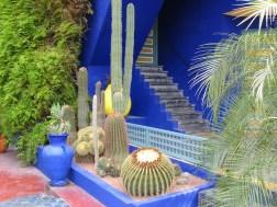 Morocco, Marrakesh - Jardin Majorelle Photo Helen Young