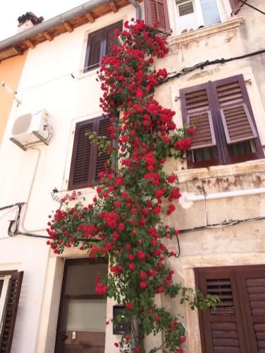 Rovinj, Istrian coast, Croatia