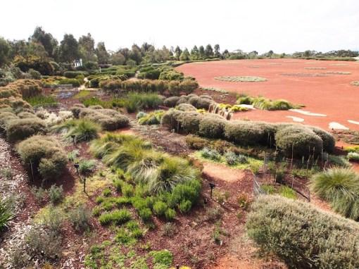 The Australian Garden at Cranbourne