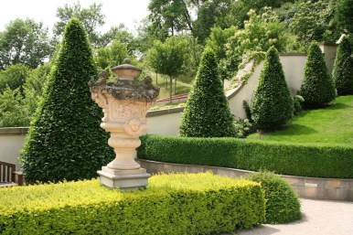 Topiary in Vrtba Gardens, Prague, Czech Republic