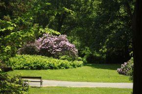 Konopiště Chateau gardens. Photo Aktron via Wikimedia Commons