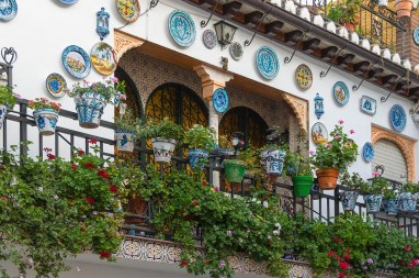 Plant decorated building in Granada, Spain. Photo tpsdave
