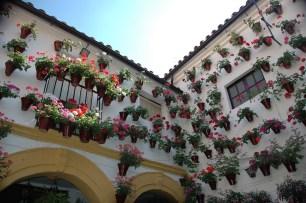 Pot decorated courtyard in Cordoba, Spain. Photo KEPA1964