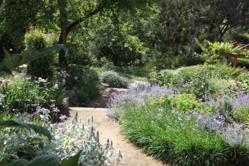 Robert Boyle garden, Ivanhoe