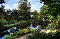 Japanese garden at Bergius Botanic Garden, Brunnsviken Photo Mikael Högfors