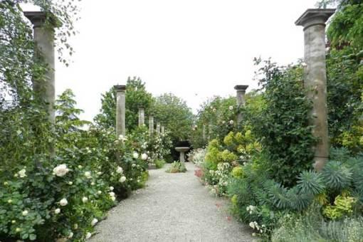 David Musker garden at Jindivick, West Gippsland