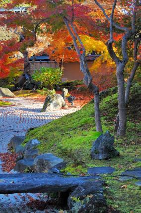Karesansui (dry garden) at Entsuin Temple © jpellgen/Flickr