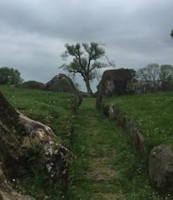 Grange stone circle near Lough Gur. Photo Ra Stewart