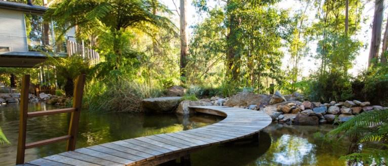 Landscape Designer, Phillip Johnson's private garden in Olinda, Victoria, Australia. Photo courtesy of Claire Takacs photography, landscaping by Phillip Johnson Landscapes.