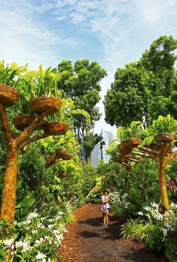 Magical Tree Grove, Singapore Garden Festival 2016. Courtesy of National Parks Board Singapore