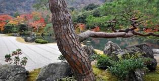 Tenryu-ji, Kyoto. Image: Jim Fogarty