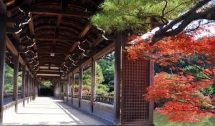 Heian Shrine, Kyoto. Image, Jim Fogarty