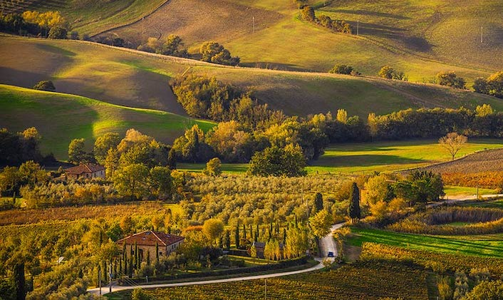 Cypress trees and rolling hills over Montepulciano in Tuscany