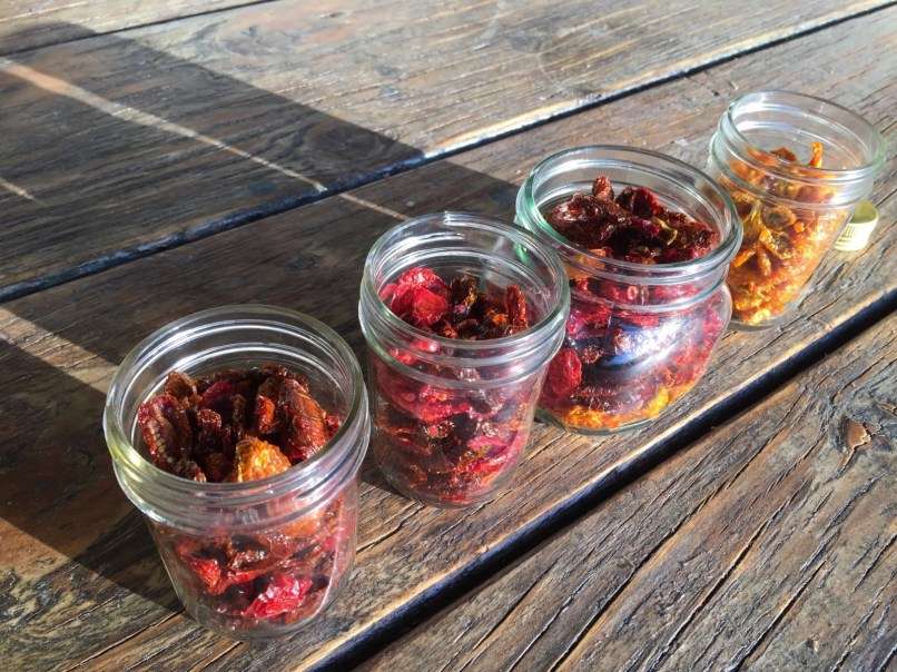 Jars packed with dried tomatoes