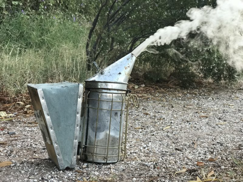What's the Best Fuel for Your Smoker?