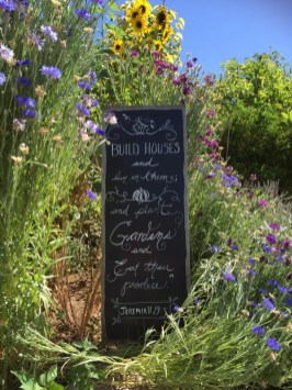 Chalkboards Signs