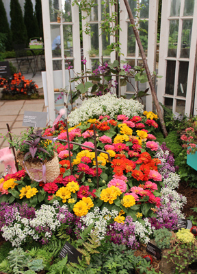 "An up-cycled ""bed"" of zinnias highlighted the award-winning French exhibit."