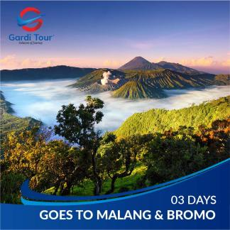 GOES TO MALANG BROMO