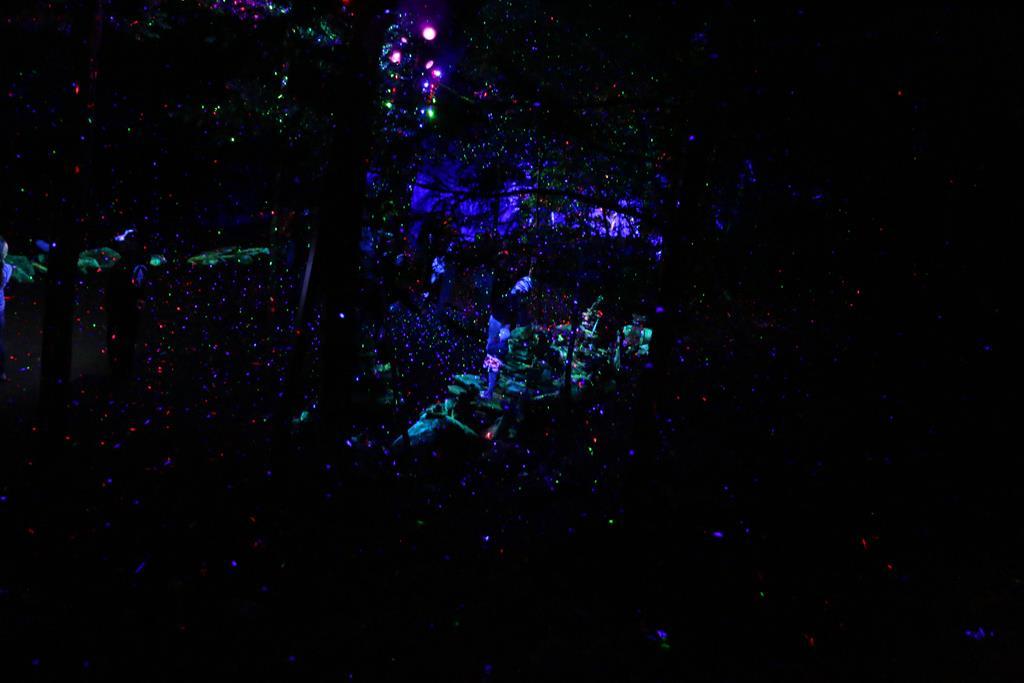 foresta-lumina-70-copy