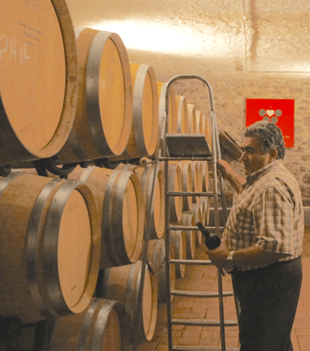 Vincent Grosjean in his cellar.