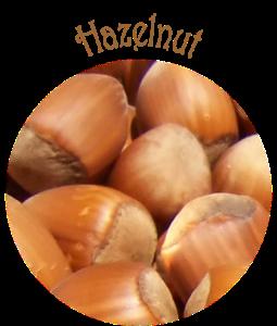 HazelnutSmall1