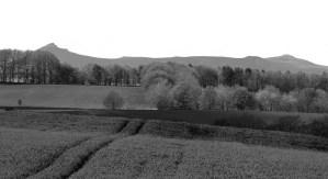 Bennachie Grey Image