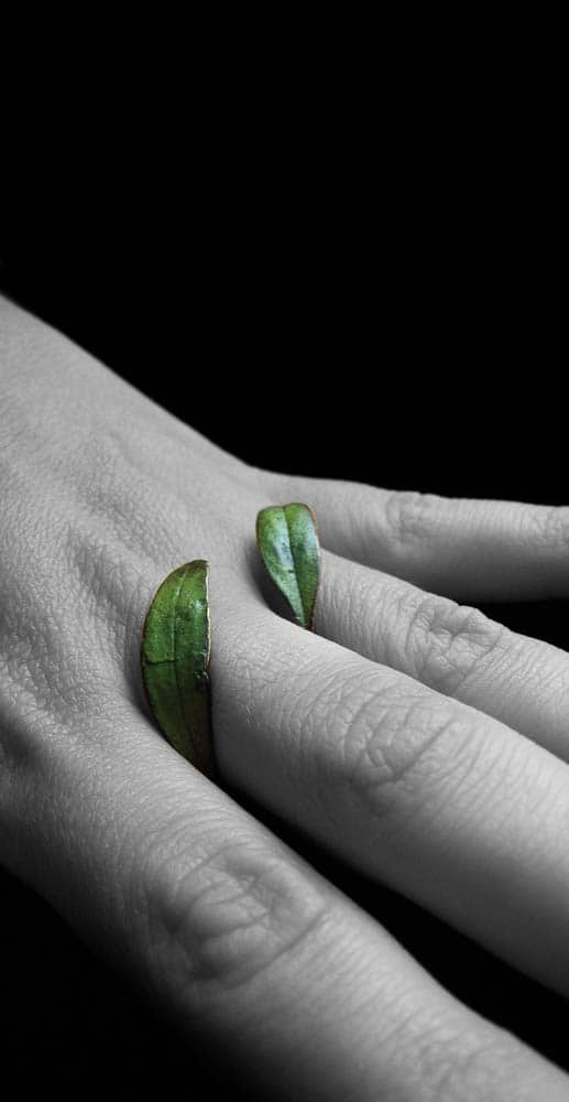 Marisa Molin, Symbiosis Series - Leaf Ring (After), 2007, Bronze, sterling silver, enamel paint, 3 x 3.8 x 1.8cm, photo: Marisa Molin, made in Tasmania