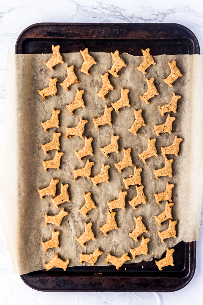 multiple peanut butter dog treats in the shape of dogs