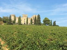 The first winery we visited in Chateauneuf-du-Pape