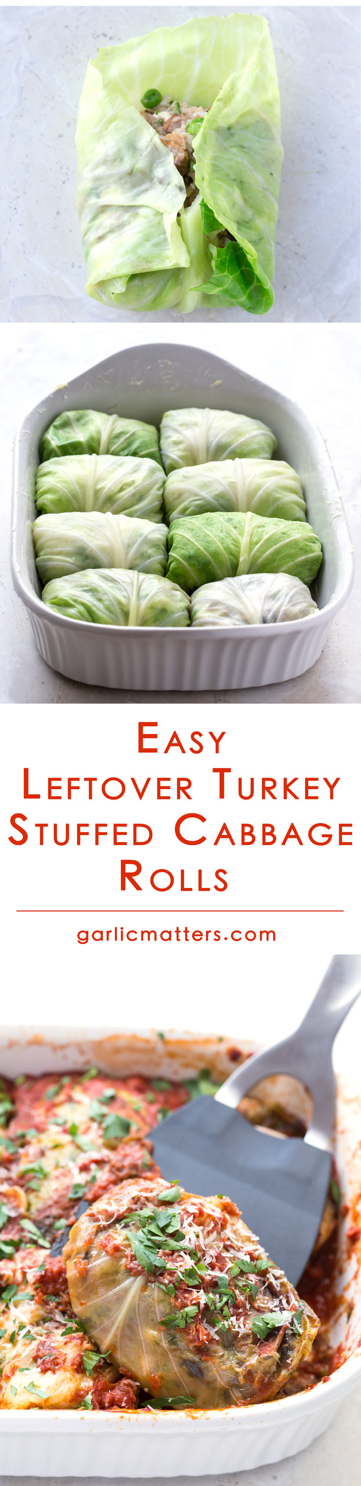 Leftover Turkey Stuffed Cabbage Rolls are yet another great way to reinvent your holiday roast leftovers. This is an easy casserole recipe, related to Polish, oven baked stuffed cabbage rolls. For the convenience of things these tasty stuffed cabbage rolls can also be made in a slow cooker (crockpot)!