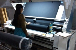 Woven Fabric Inspection