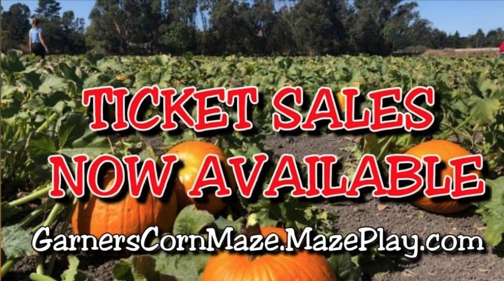 Pumpkin Patch & Corn Maze
