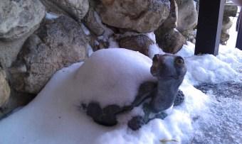 Snow Shell