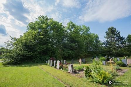 Garnisonsschuetzenhaus-Donrhaldenfriedhof-Offenlandbiotop-Gehoelze-3Jun14_CClausen