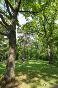 Garnisonsschuetzenhaus-Waldfriedhof-LSG_3Juni14_CClausen-2